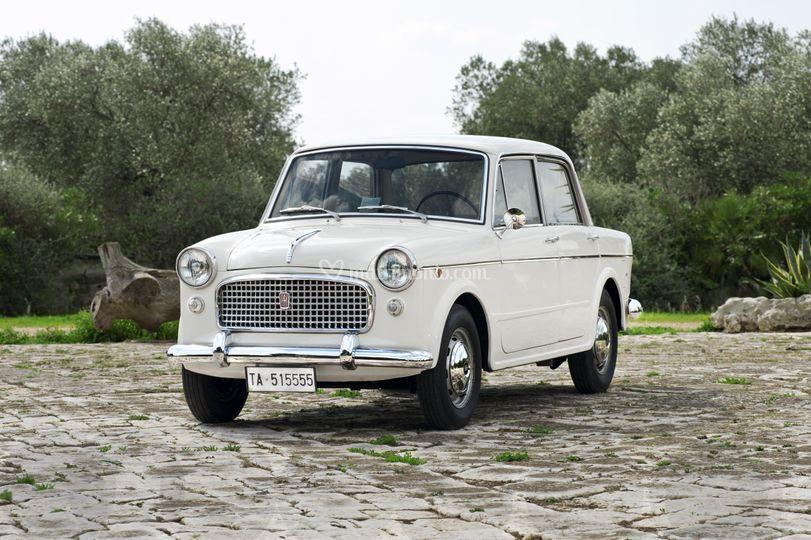 Fiat 1100/103 Panoramica