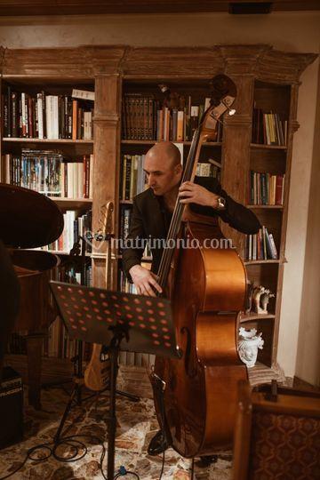 Davide Borgongni - Bass