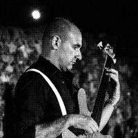 Davide Borgogni