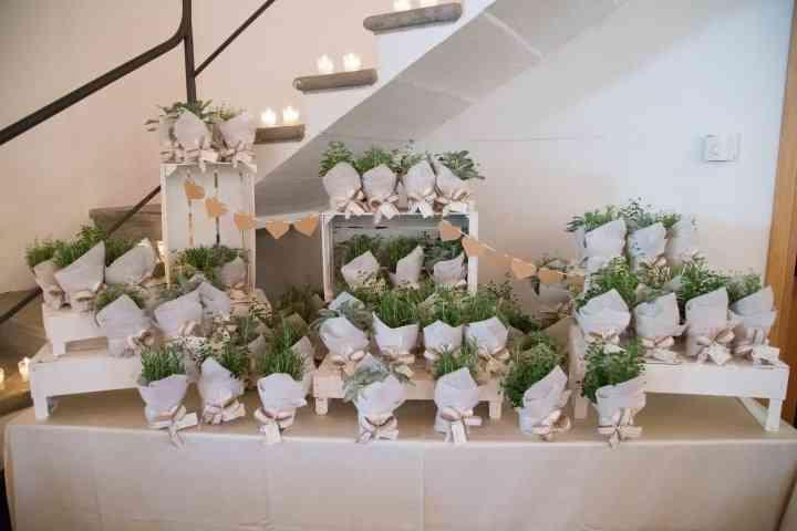Bomboniere utili per matrimonio - Erbe aromatiche in casa ...