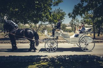 Matrimonio in carrozza: 10 punti essenziali per scegliere questo mezzo di trasporto