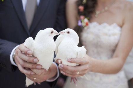 Volo di colombe bianche come regalo di matrimonio