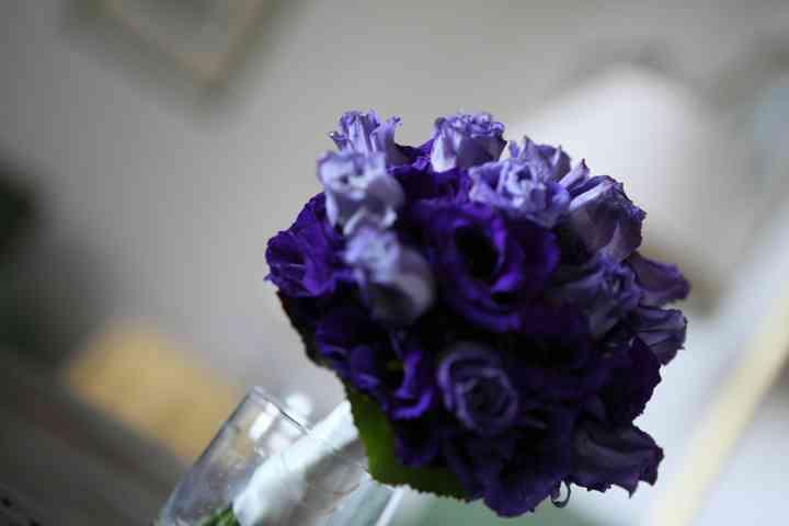 Romantic Flowers di Luciano Cappelli