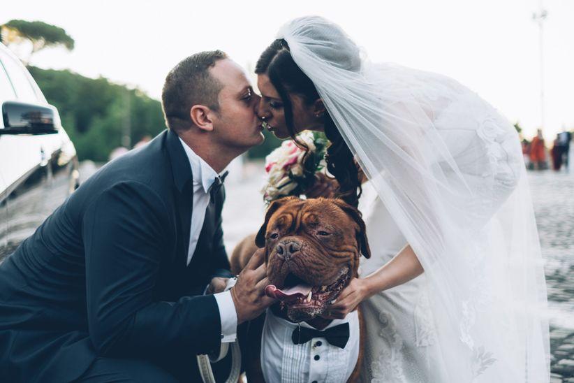 7 suggerimenti per un matrimonio in compagnia degli amici a 4 zampe