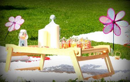 Come organizzare un picnic di nozze in alternativa al ricevimento