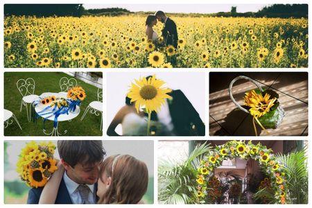Come decorare le tue nozze con i girasoli