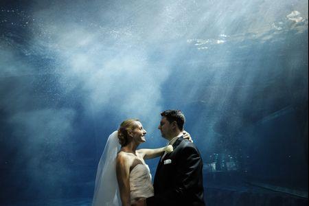 Anche noi, come l'acqua che scorre, siamo viandanti in cerca di un mare: le nozze di Chiara e Marco