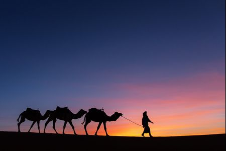 Viaggio di nozze in Marocco: un magnifico tour per una romantica esperienza