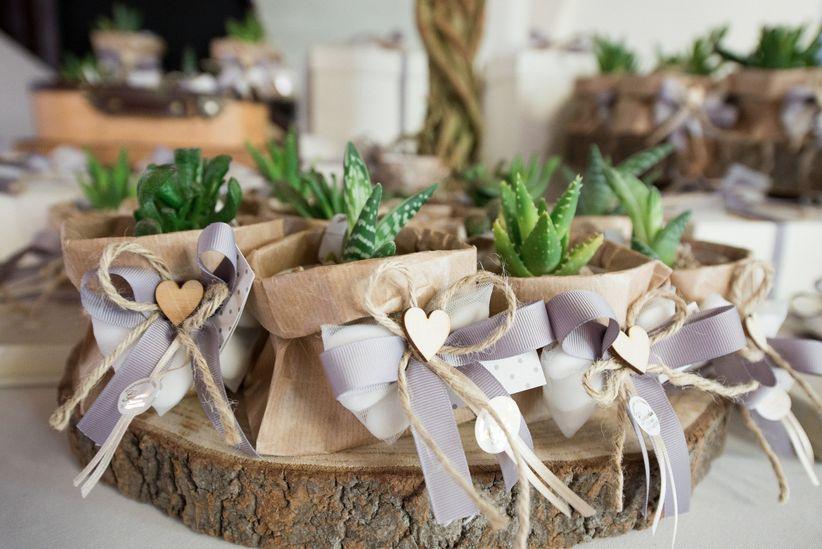 Cactus in sacchetti di carta grezza e decorazioni in iuta e stoffa Da  dphotoreportage