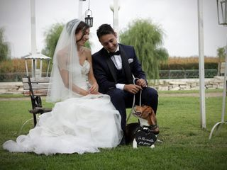 Orma di Maya - Wedding Pet Sitter 4