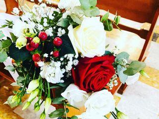 Salvo Flowers 1
