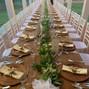 Le nozze di Linda Balluchi  e Cantina Famiglia Rivetti 6