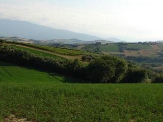Villa San Lazzaro 2