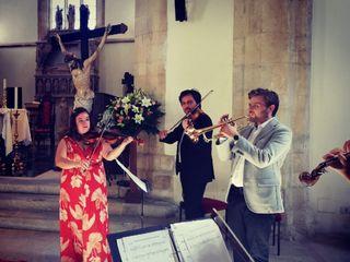 Violinista Beatrice Limonti 4