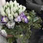 le nozze di Laura Alfano e Angela Fiori 5