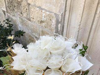 Piante e Fiori Gardenia 4