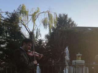 Violinista - Cisco 6