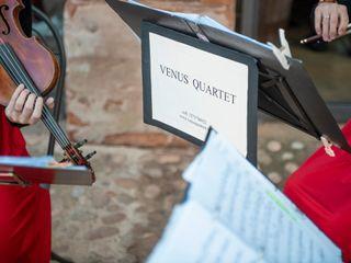 Venus Quartett 2
