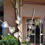 le nozze di Adriana Vella e Parco Hotel Granaro 8