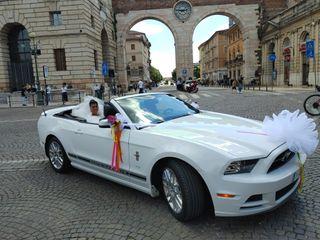 Mustang Noleggio 5