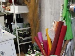 L'elfo piante e fiori 5