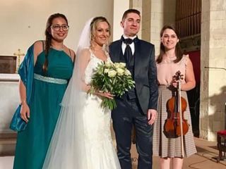 Violin Married 2