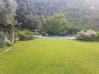 Villa Musmeci 2
