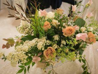 Anneris Flower Farm 1