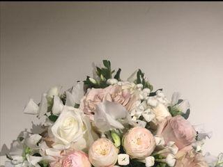 Gardenia di Paola Montanari 1