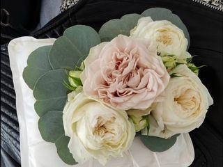 Gardenia di Paola Montanari 5