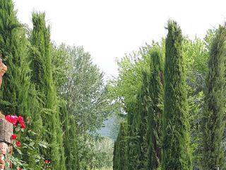 Villa Fambrini 1