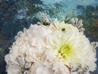 Gypsophila flowers designer 1