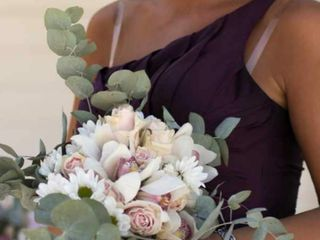 Rosa Bianca 5