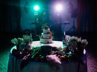 Cake Studio 4