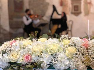 Andrea Granatiero Violino 2