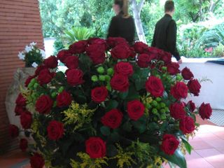 Di Rosa Floral Designer 2