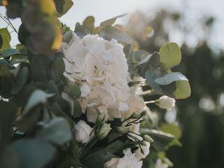 Ancilla Flower Lab di Degani Sara 5