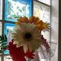 Floricoltura Mazzocchi 15