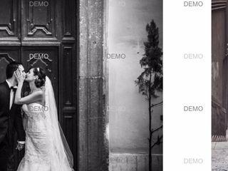 Antonella Ricciotti Photography 4