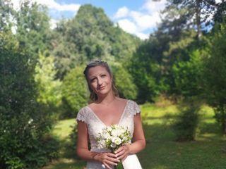 Viola fiori matrimoni eventi 1