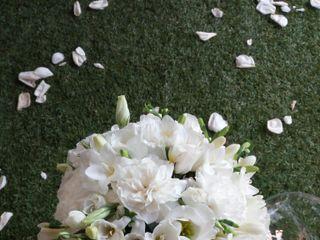 Viola fiori matrimoni eventi 3