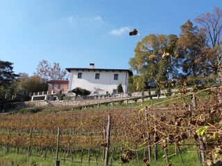 Villa Calchi 5