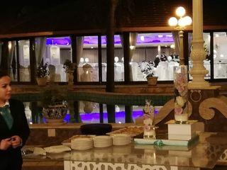 Villa Oasis 3