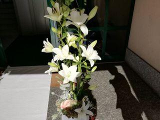 Le Rose di Sharon 5