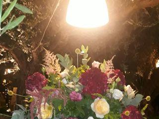 Salvo Flowers 5