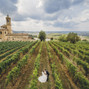 le nozze di Annalisa Oddone e JoyPhotographers 26