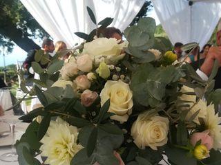 Matrimoni Speciali 2