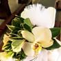 Le nozze di Marianna C. e Ideaverde 13