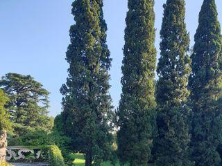 Villa Subaglio 5