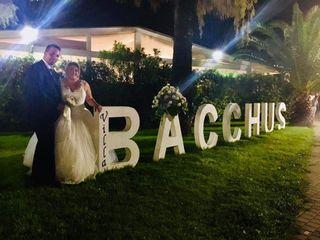 Villa Bacchus 5